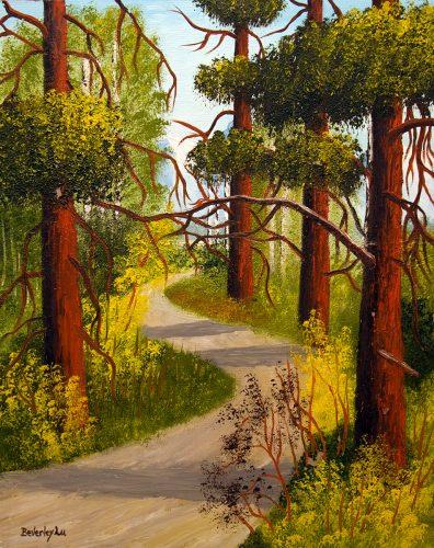 In Between The Redwoods